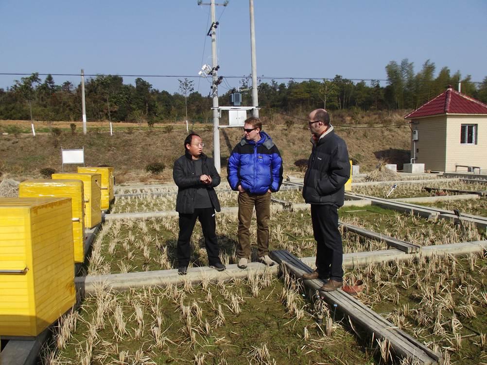 葛体达博士与英国班戈大学教授进行田野调查